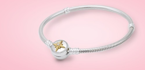 Pandora Bracelets Category